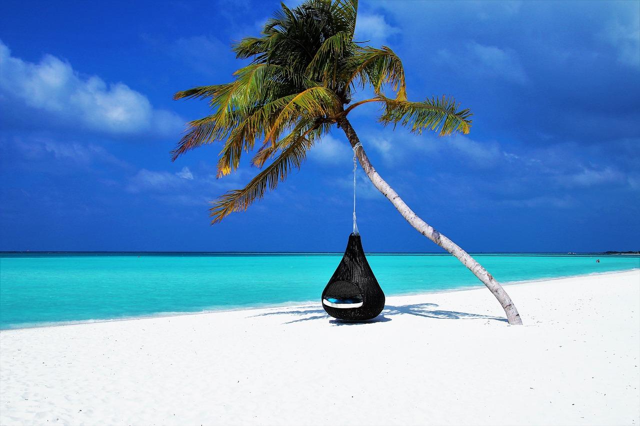 Канал Яндекс-Дзен для тех, кто изучает мир «Путешествия и отдых». Каталог каналов Яндекс-Дзен