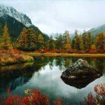 Канал Яндекс-Дзен о суровых местах нашей страны «Хроники Дальнего Севера». Каталог каналов Яндекс-Дзен