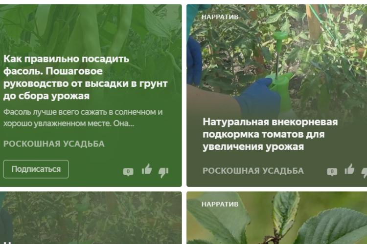 "Канал Яндекс-Дзен для фанатов дачи ""Роскошная усадьба"". Каталог каналов Яндекс-Дзен"